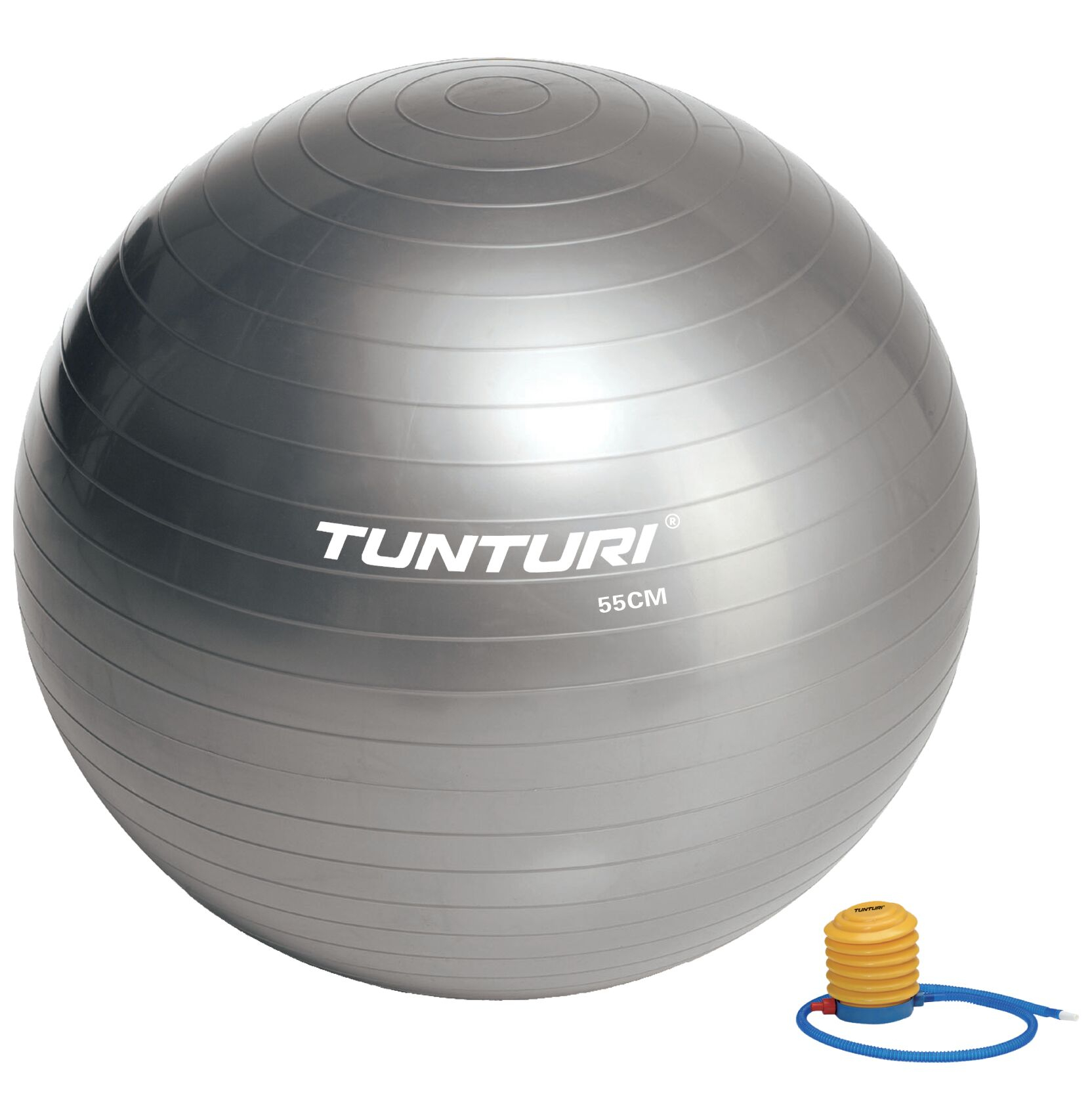 Tunturi fitnessbal 65 cm zilver